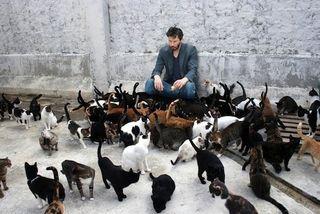 Keanu_cats