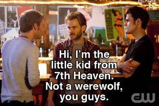 Klaus_stefan_mini-wolf